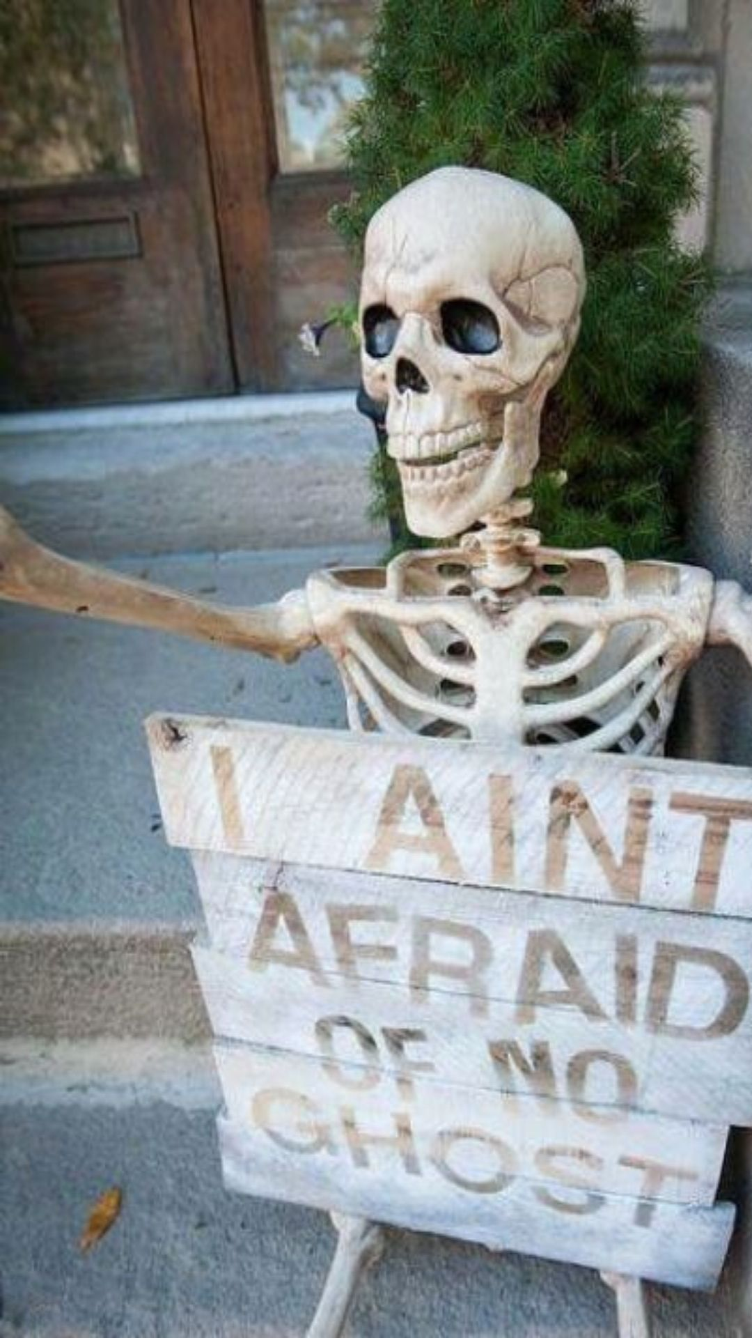 Best Halloween Wood Signs For Indoors And Outdoors